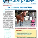 HJ Print cover March 2013